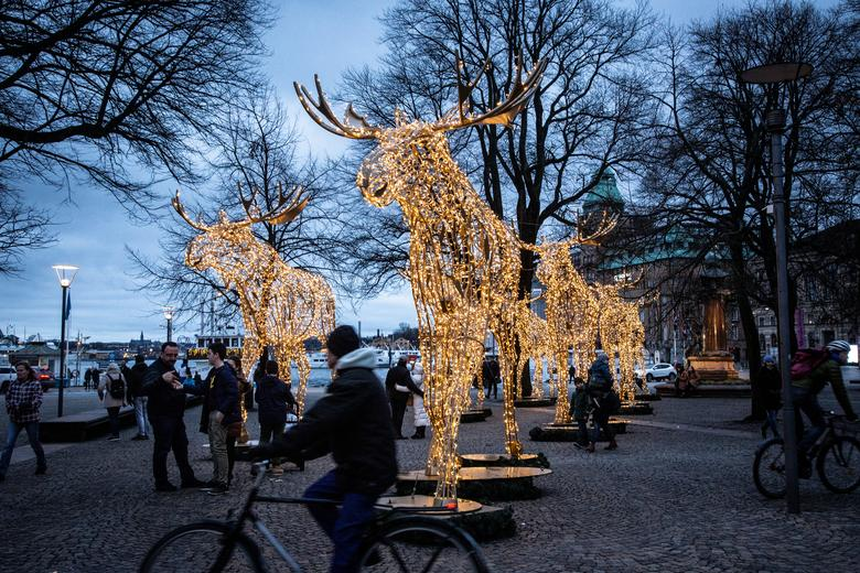 La gente pasea entre las instalaciones de luces navideñas formadas como alces en la Plaza Raoul Wallenberg en el centro de Estocolmo, Suecia, 22 de diciembre de 2019. Helena Landstedt / TT News Agency / via REUTERS