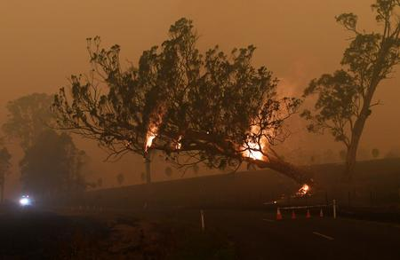 UPDATE 3-Australia uses bushfires breather to plan for the next onslaught