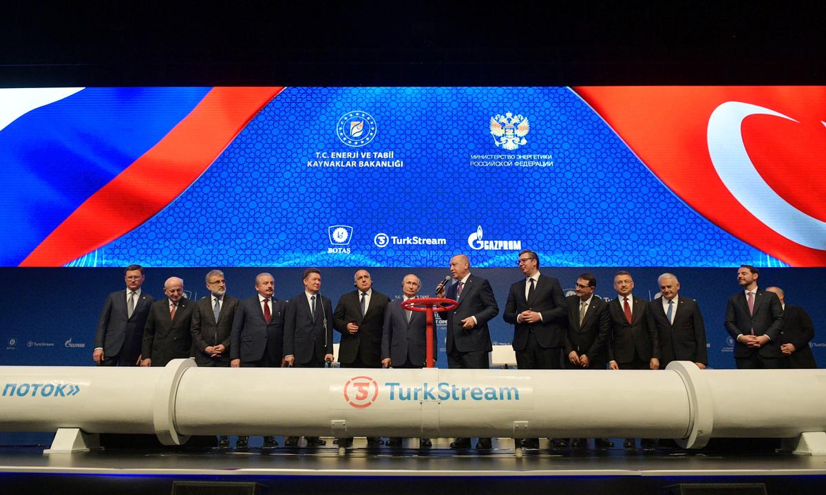 Turkey, Russia launch TurkStream pipeline carrying gas to Europe