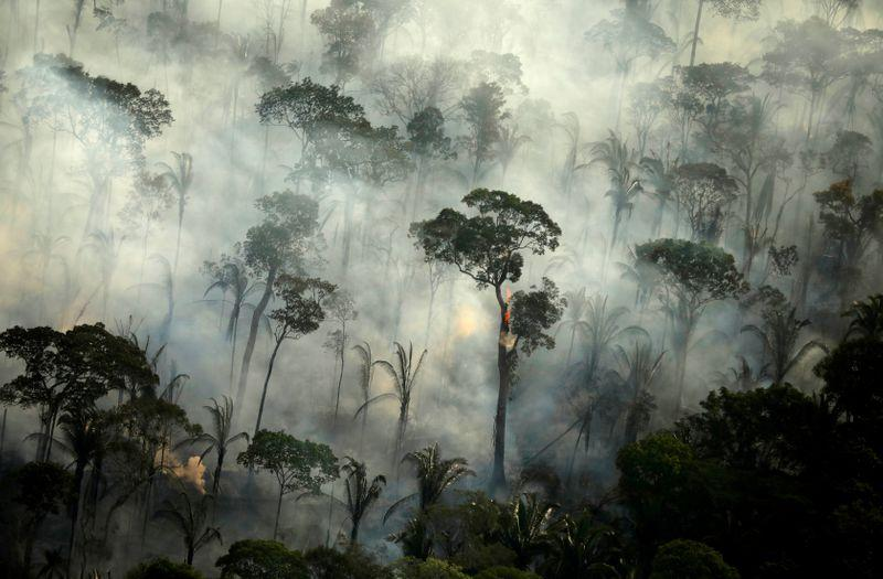 Fires In Amazon Forest Rose 30 In 2019 Reuters