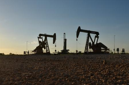 Oil prices stabilize, set for weekly gain on hopes for supply cut