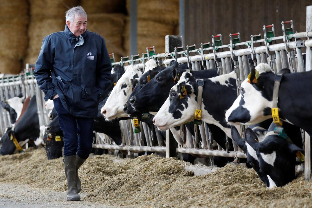 French farmers sweat over subsidies in post-Brexit EU budget talks