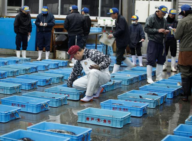 FILE PHOTO: Pufferfish wholesalers check the pufferfish on sale at an early morning auction in Shimonoseki, Japan February 7, 2020. Picture taken on February 7, 2020. REUTERS/Sakura Murakami