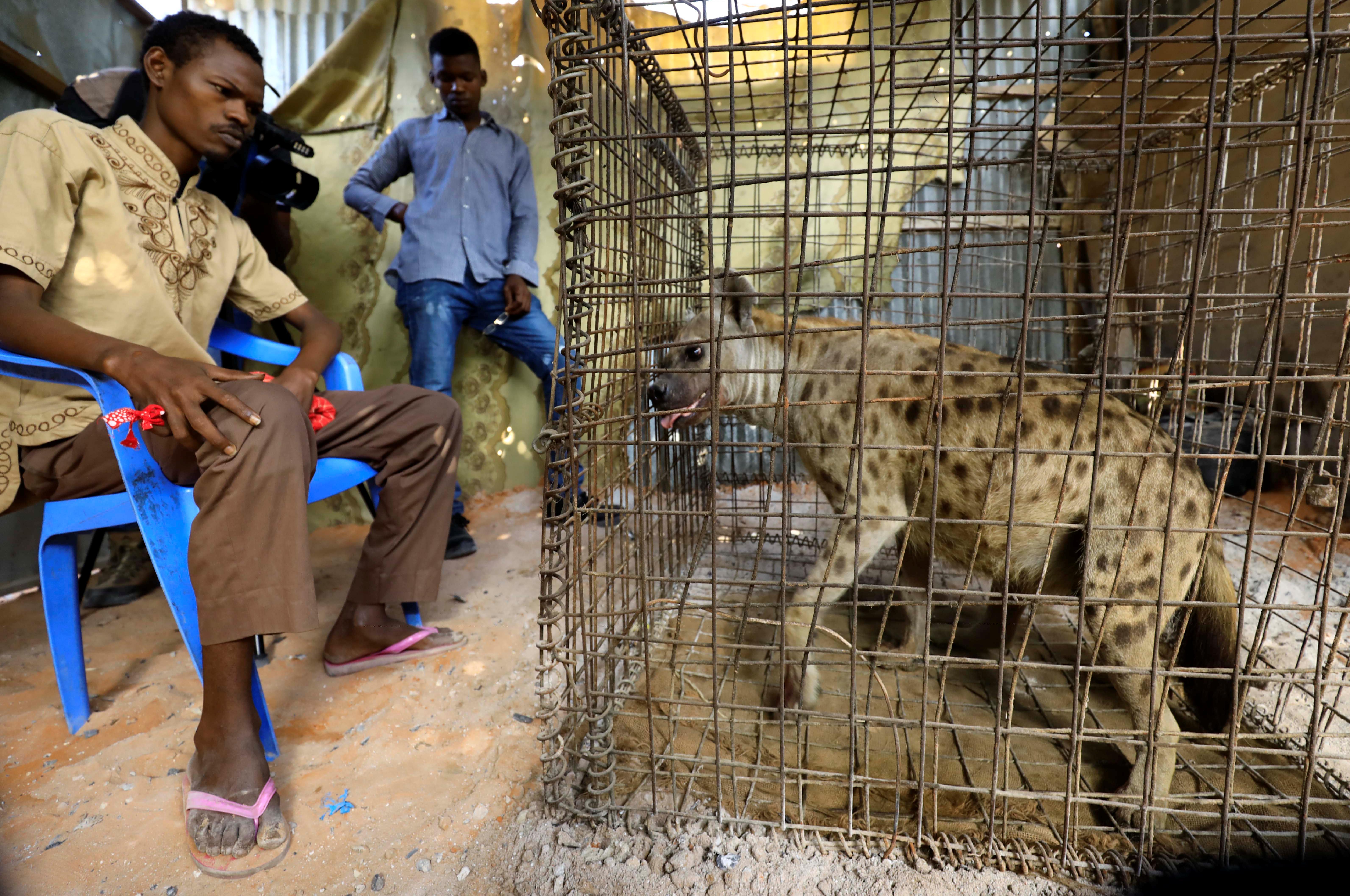 Somalis turn to Dr Hyena to fight depression, mental illness