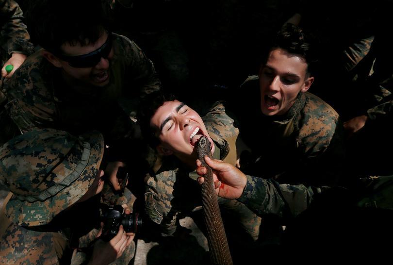 Cobra Gold military exercises   Reuters.com