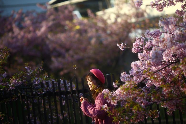 Женщина улыбается между ранним цветением вишни в Киото, Япония, 13 марта 2020 года. РЕЙТЕР / Эдгард Гарридо