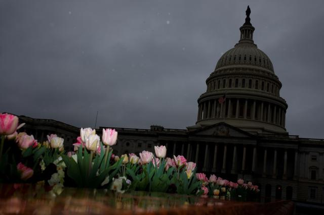 The U.S. Capitol during a morning rainstorm, after Congress agreed to a multi-trillion dollar economic stimulus package created in response to the economic fallout from the COVID-19 Coronavirus, on Capitol Hill in Washington, U.S., March 25, 2020. REUTERS/Tom Brenner