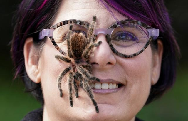 Optician and former science educator Ali Nelson, jobless after her Washington D.C.-based eyewear store closed due to coronavirus, poses with her pet tarantula Polly at her home in Burke, Virginia, U.S., March 26, 2020. REUTERS/Kevin Lamarque