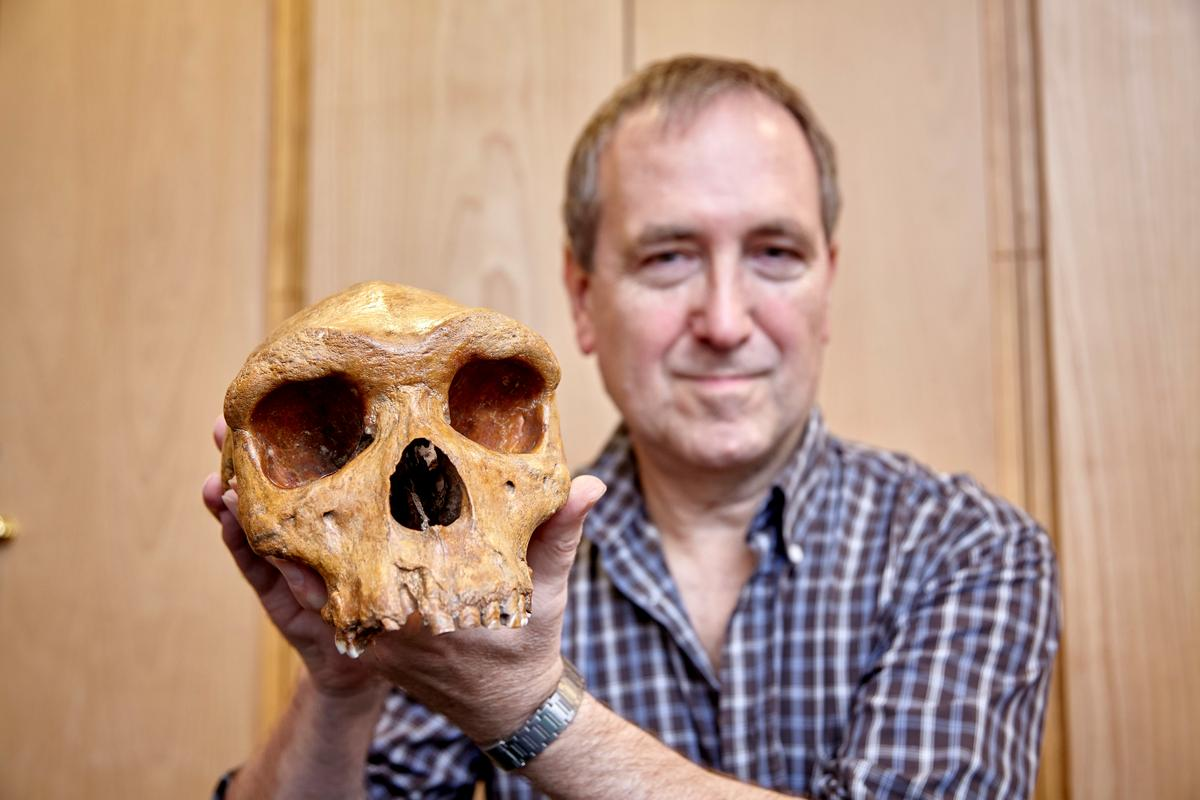 Landmark skull fossil provides surprising human evolution clues