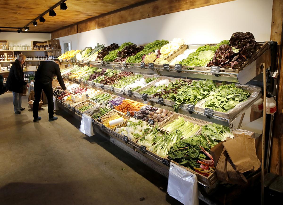 World food prices fall sharply in April because of coronavirus: U.N.