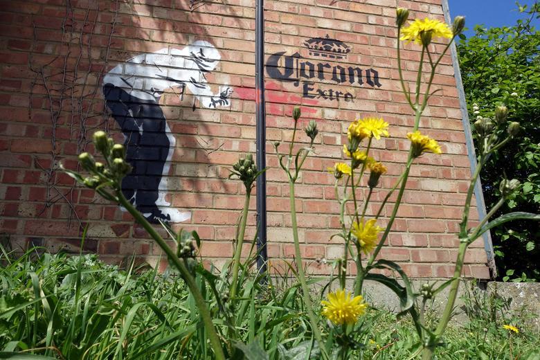 Фреска Corona Extra видна на стене здания в Эйлсфорде, Великобритания, 1 мая. РЕЙТЕР / Адам Оливер