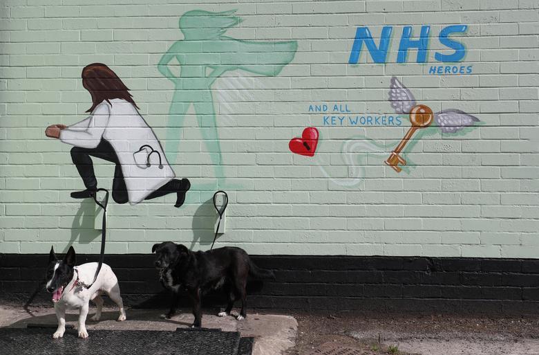 Собаки видны перед росписью в честь НСЗ в Понтефракте, Великобритания, 1 мая. РЕЙТЕР / Ли Смит