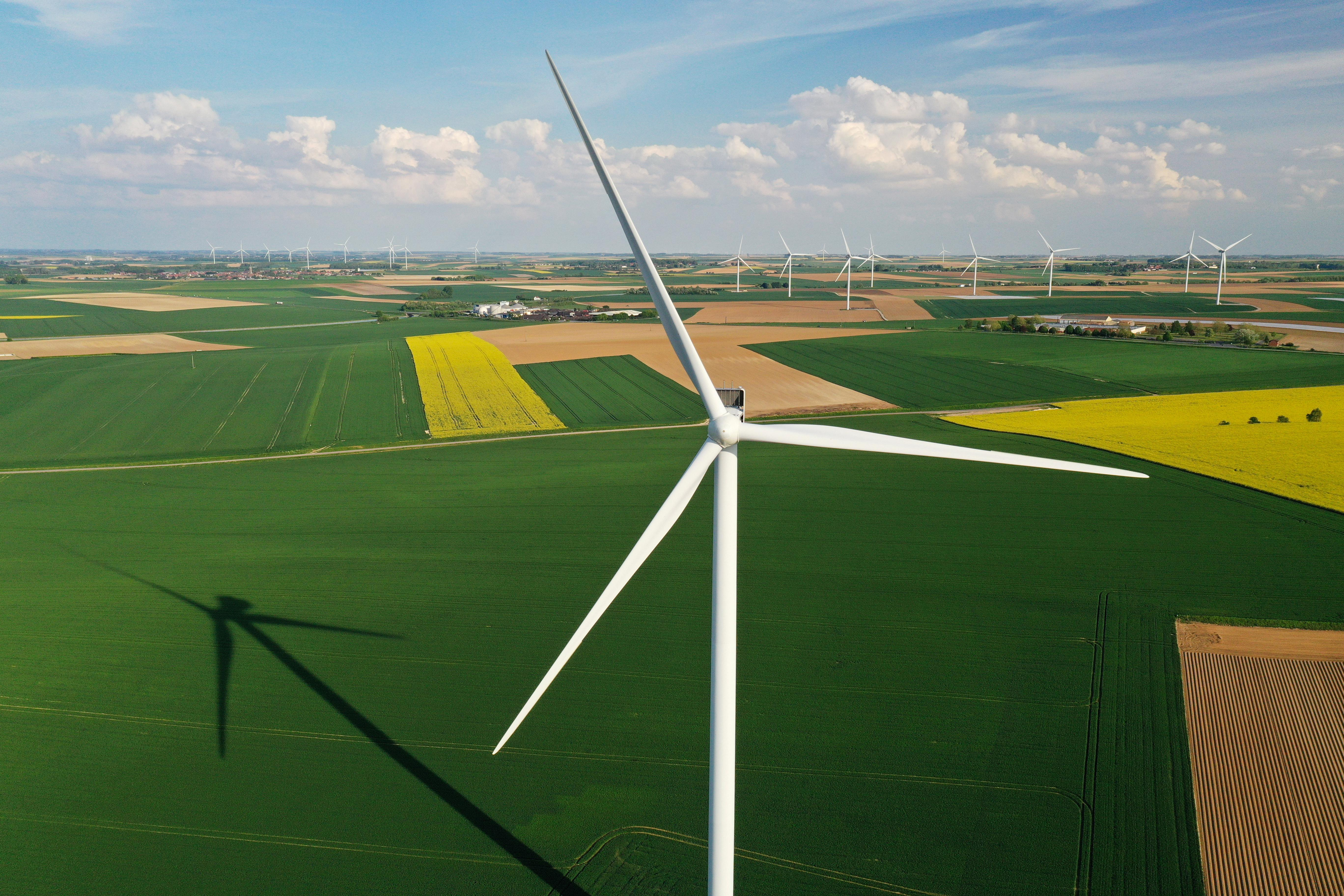 Global green energy growth to fall for first time in 20 years: IEA