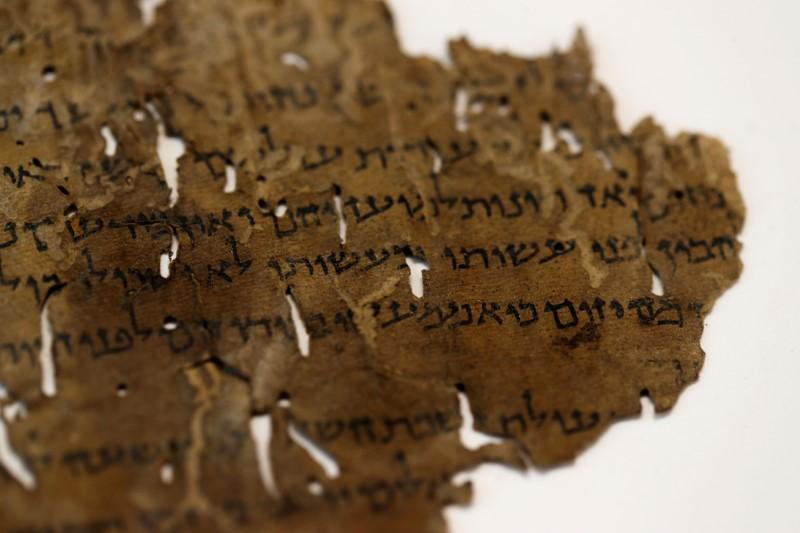 Hides that reveal: DNA helps students divine Useless Sea Scrolls