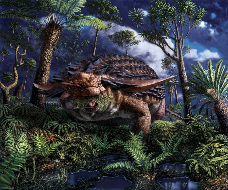 Fossilized abdomen contents present armored dinosaur's leafy final meal