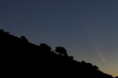 Rare comet streaks across our sky
