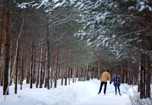 Britain, Canada, EU throw weight behind 2030 biodiversity protection goal
