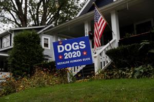 Signs of the times: Voters share their 2020 election views