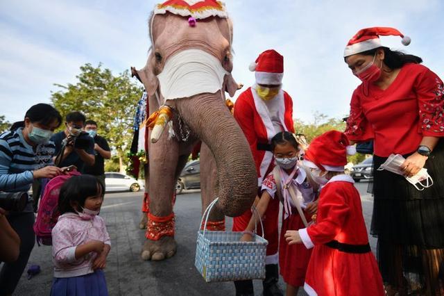 Papá Noel viaja en elefante a un pueblo de Tailandia y regala mascarillas |  Reuters