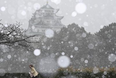 Record COVID-19 cases in Tokyo, heavy snow curtail New Year celebrations in Japan